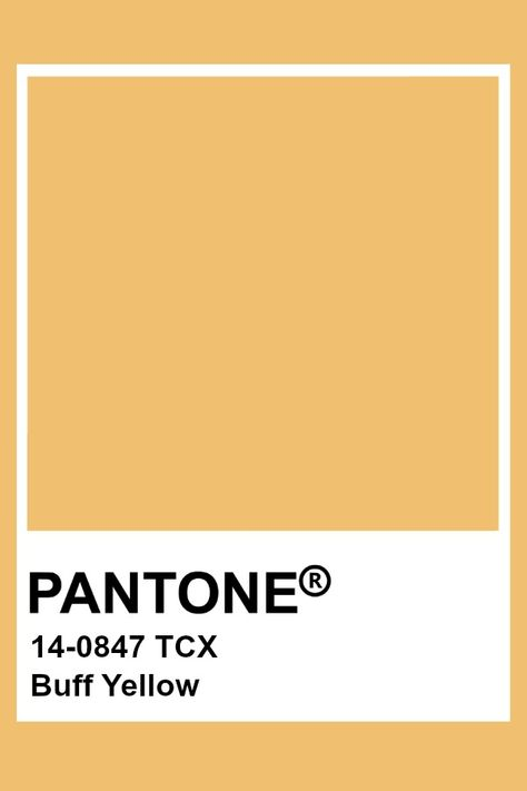Pantone Buff Yellow