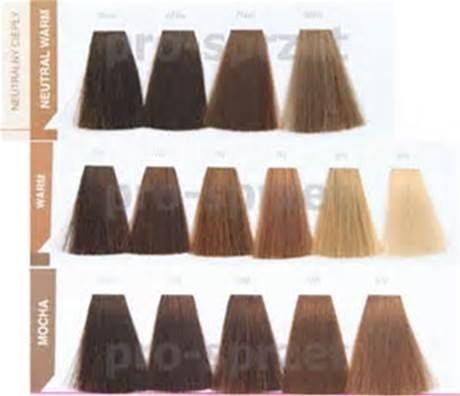 The  Best Matrix Socolor Chart Ideas On   Matrix Hair