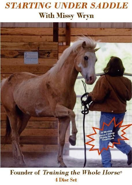 Gentle Horse Training W Starting Under Saddle Dvd Series Horses Horse Training Equestrian