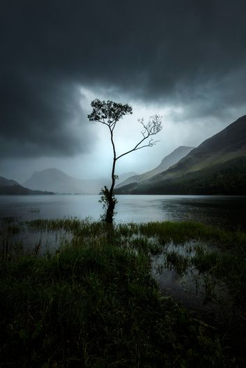 Lone Tree At Buttermere Mads Peter Iversen On Landscape Photography Art Beautiful Landscape Photography Landscape Photos