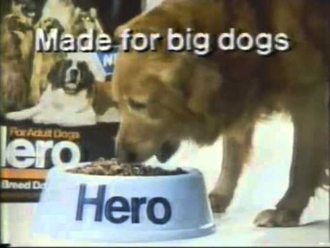 Dana Plato 1980 Hero Dog Food Commercial Dog Food Recipes Dogs