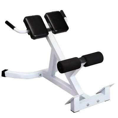 Exercise Chair Bench Abdominal Back Workout Gym Fitness Extension Machine Ab