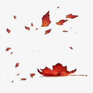 Falling Leaves Autumn Red Leaves Wandering Png Transparent Clipart Image And Psd File For Free Download Autumn Leaves Photoshop Overlays Background Images Wallpapers