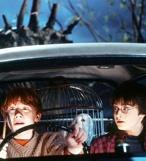 Harry Potter and the Chamber of Secrets. Ron Weasley and Harry in a muggler car. Movie, Ron's face is priceless :-) - photo