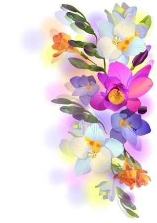 Greeting Background With Pictorial Freesia Flowers Freesia Flowers Flower Illustration Flower Wallpaper