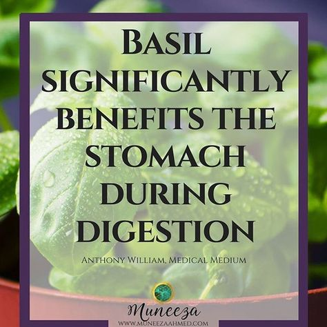 spoonie Basil can provide immediate...