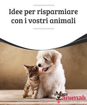 Idee Per Risparmiare In Casa.Idee Per Risparmiare Con I Vostri Animali Casa Animali Mobili