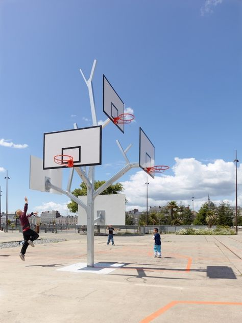 L'arbre à Basket | stephane chalmeau