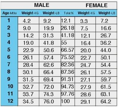 Weight With Height Chart Male In Kg Male Height And Weight Puppy