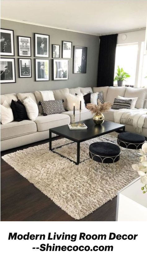 Modern Living Room Decor --Shinecoco.com