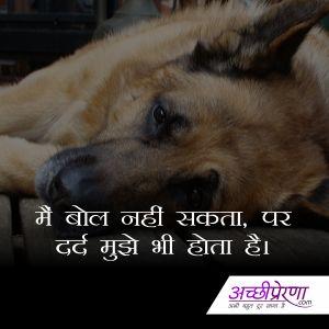 Sandeep Negi Achhiprerna On Pinterest