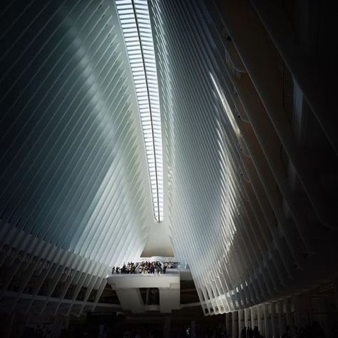 photo Oculus (@oculuswtc) by Swee Oh...