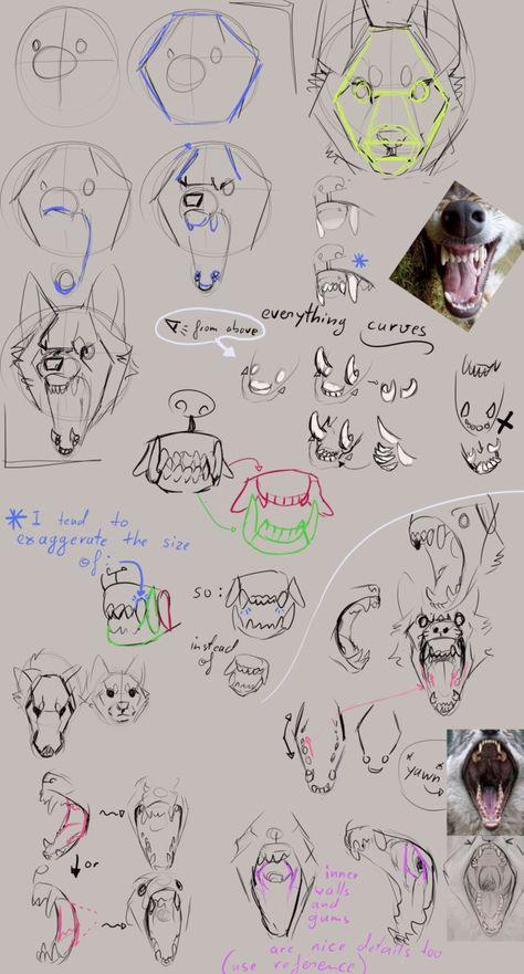 How to draw Snarly Wolves: Advice and Tipps by Remarin on DeviantArt - Mund Zeichnen Animal Sketches, Animal Drawings, Art Sketches, Art Drawings, Wolf Drawings, Pencil Drawings, Anime Wolf Drawing, Furry Drawing, Drawing Drawing