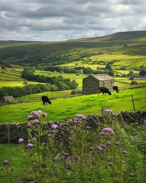 Yorkshire Dales, England photo via briana Yorkshire England, Yorkshire Dales, Cornwall England, England Uk, Oxford England, London England, North Yorkshire, Northern England, British Countryside