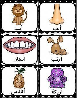 السلام عليكم معادنا النهرده مع حرف التاء ت تمساح ت تفاح ت تاج ومعها بعض التمارين ال Alphabet Coloring Pages Arabic Alphabet For Kids Arabic Alphabet