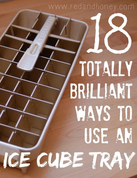 10 Totally Brilliant Ways to Use an ice Cube Tray. How cool!