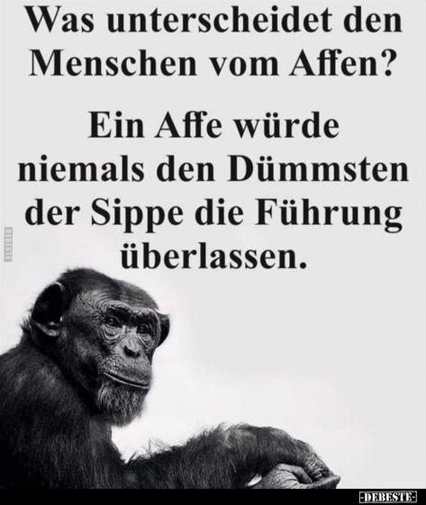 Was unterscheidet den Menschen vom Affen