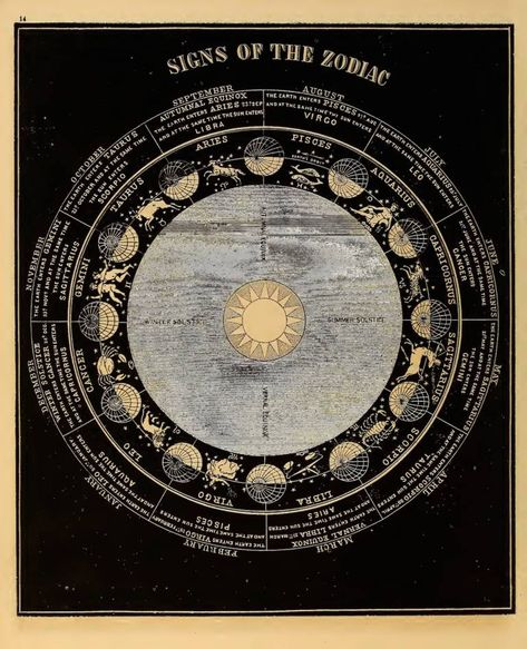 """Signs of the Zodiac "". Wood engraving From Smith's Illustrated Astronomy. Wall Prints, Poster Prints, Posters, Art Print, Celestial Map, Wall Collage, Wall Art, Sun Illustration, Zodiac Constellations"