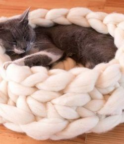 12++ Diy chunky cat bed inspirations