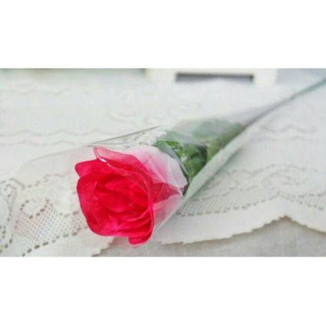 Gambar Bunga Mawar Beserta Tangkainya Bunga Mawar Setangkai Bunga Rose Kuncup 1 Tangkai Bunga Artificial 5 Fakta Unik Tentang Bun Gambar Bunga Bunga Gambar