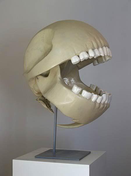 Pac Man skeleton