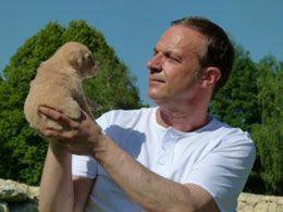 Retreiverparadies Gilich Karlshuld Golden Retriever Welpen Retriever Hund