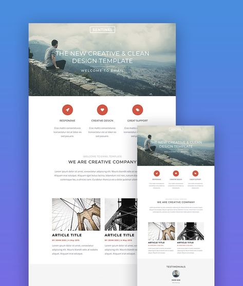 34 Best Mailchimp Responsive Email Templates (2021 Newsletters)