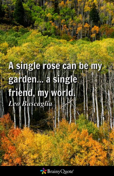 Top quotes by Leo Buscaglia-https://s-media-cache-ak0.pinimg.com/474x/0a/26/61/0a26615d6f9fd3cc7a6971e78873ea94.jpg