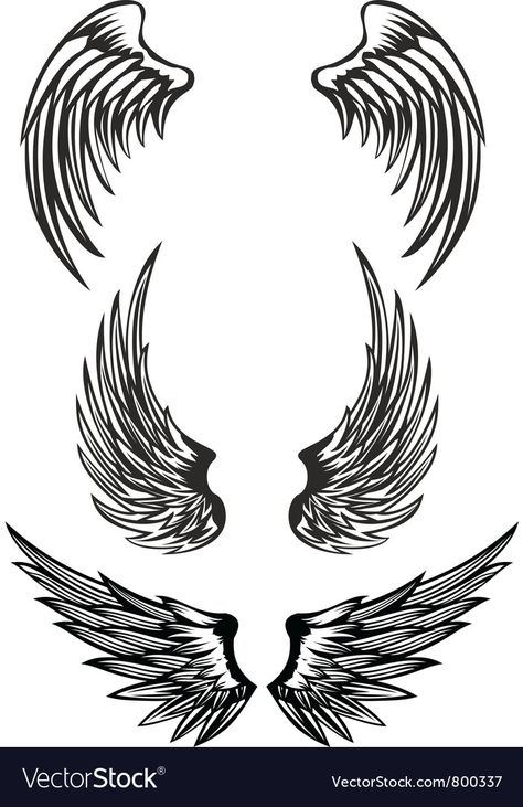Wings Royalty Free Vector Image - VectorStock
