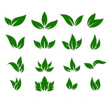 Leaf Icons Vector Design Leaves Green Concept Illustration Isolated Nature Premium Leaf Clipart Leaf Icon Png And Vector With Transparent Background For Free Vector Design Logo Design Video Farm Logo Design