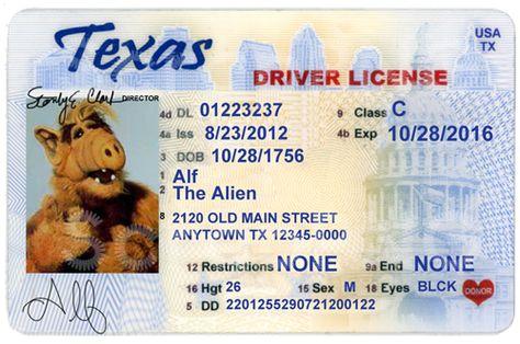 florida drivers license template psd free sevencaddy