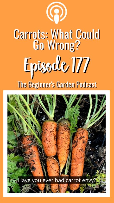 Carrots: What Could Go Wrong?