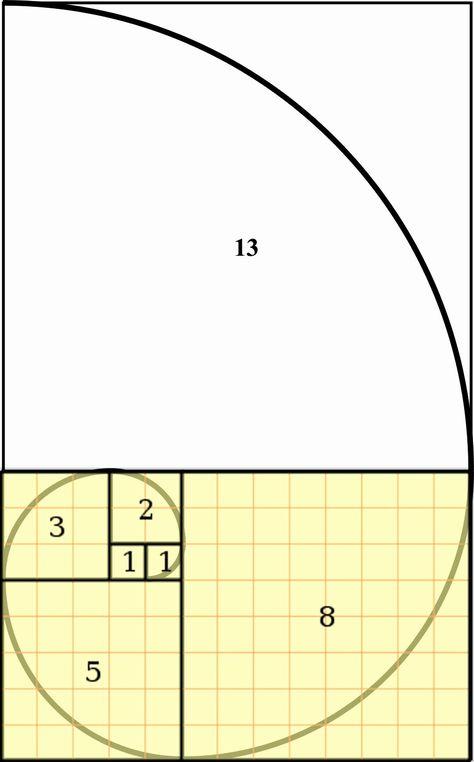 die 10 besten ideen zu goldene spirale zeichnen  spirale