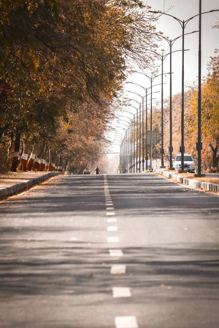 Gray Concrete Road Between Trees During Daytime Photo Free Road Image On Unspla In 2021 Photo Background Images Dslr Background Images Blurred Background Photography Best road background images hd