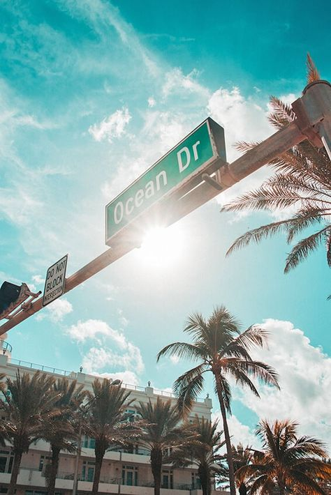 25 romantic and fun things to do in Miami for couples: ultimate bucket list! Palms and the Ocean Drive sign in Miami New Travel, Travel Goals, Travel Usa, Travel Tips, Miami Beach, Miami Ocean Drive, Vasco Wallpaper, Miami Wallpaper, Voyage Miami