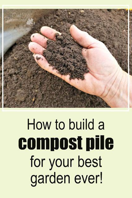 0a793743ed62517ec7ec0fe7b1f74595 - Let It Rot The Gardener's Guide To Composting