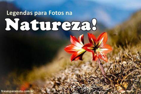 Pin De Joyce Portugal Em Frases Frases Para Fotos