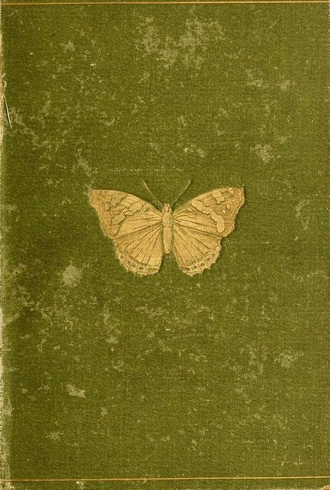 Olive Green and Gold / Book cover Butterflies and Moths (British) by W. Published 1894 by Longmans, Green, and Co. Book Cover Art, Book Cover Design, Book Design, Book Art, Vintage Book Covers, Vintage Books, Beautiful Book Covers, Antique Books, Moth