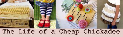 The Life of a Cheap Chickadee