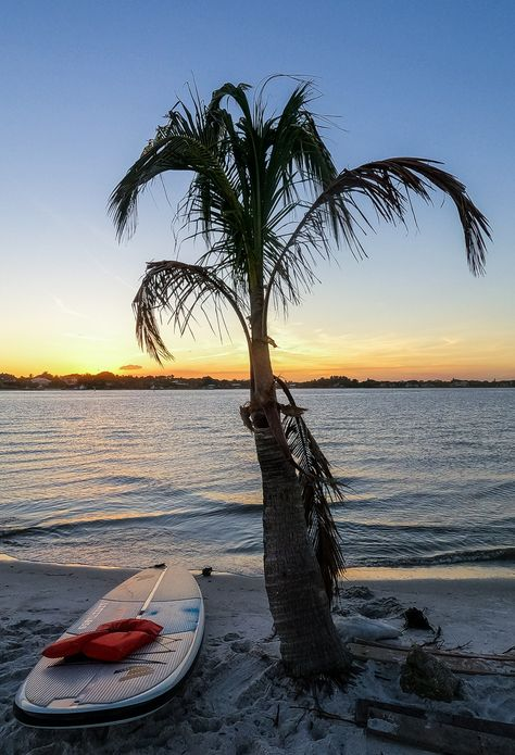 Planning to visit Florida? Looking for Florida destinations and experiences on a South Central Florida road trip? Check out these 8 amazing experiences the whole family will love on your Florida vacation. #Florida #travel #familytravel #beaches #vacations