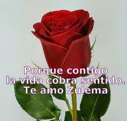 Frases De Amor Para Escribir Con Un Ramo De Flores Frases