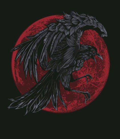 Raven, Crow, et Corbacs  0ac1033ec37356a60cd378dd503c10de--beautiful-pictures-crows