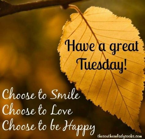 Choose Tuesday Happy Tuesday Quotes Tuesday Quotes Good