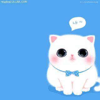 Download Wallpaper Kucing Gambar Kartun Hewan Lucu Dan Imut Terupdate