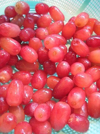 How To Clean Grapes Just Tried And It Totally Works How To Wash Grapes Grapes Food Facts