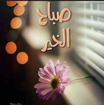 صبآحكم عطر وقلآئد فل صور متنوعة لـ صبآح آلخير 2019 مداد الجليد Beautiful Morning Messages Good Morning Arabic Good Morning Photos