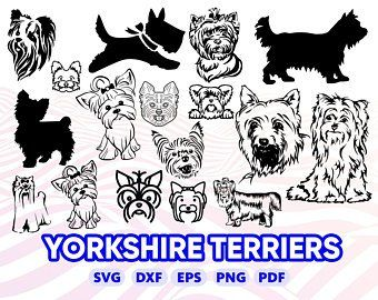 Shih Tzu Svg Dog Svg Shih Tzu Clipart Shih Tzu Silhouette Etsy Yorkie Dogs Yorkie Svg
