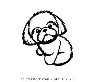 Shih Tzu Illustration Vector In Monochrome Black And White Outline Images Dog Paintings Dog Illustration