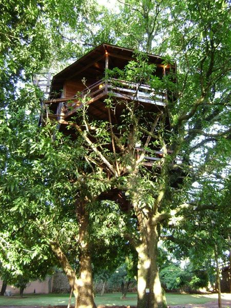 spectacular brazilian treehouses by casa na arvore treehouses rh pinterest es