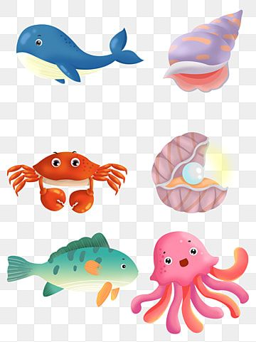 8 การ ต นส ตว ทะเลออกแบบเวกเตอร ว สด ปลาฉลาม ปลาวาฬ ปลาเขตร อนภาพ Png และ Psd สำหร บดาวน โหลดฟร ในป 2021 ส ตว การ ต น ภาพประกอบ
